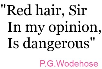 Wonderland-Wigs_-Quotes